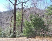 43 Mountain Lion Road, Purlear image
