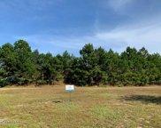 2177 Palm Pointe  Ne, Leland image