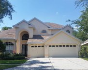 10160 Deercliff Drive, Tampa image