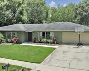 14317 Brentwood Drive, Tampa image
