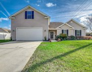 228 Black Bear Rd., Myrtle Beach image