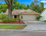 7227 Hollowell Drive, Tampa image