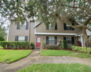 16504 Lake Brigadoon Circle, Tampa image