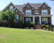 313 Fallen Timber Trail, Blythewood image