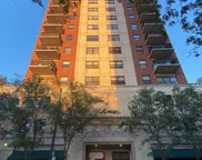 1529 South State Street Unit 11A, Chicago image