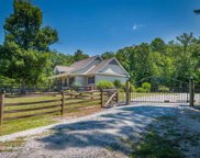 1040 Landrum Mill Road, Campobello image