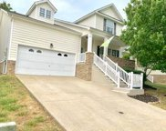 408 Stone Chimney Ct, Nashville image