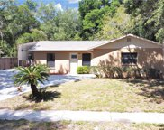 2313 Towery Trail, Lutz image