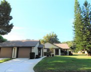 2488 Oakleaf Drive, Clearwater image