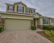 9250 Ivywood Street, Clermont image