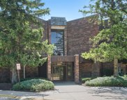 925 Spring Hill Drive Unit 204, Northbrook image