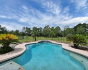 55075 COUNTRY TRAIL DR, Callahan image
