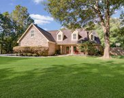 1018 N Commons View Drive, Houston image