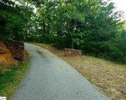 19 Old Altamont Ridge, Greenville image