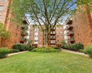 1503 Oak Avenue Unit #413, Evanston image