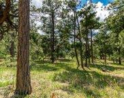 19245 Hilltop Pines Path, Monument image