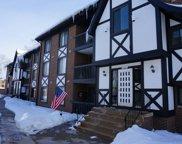 13609 S Lamon Avenue Unit #607, Crestwood image