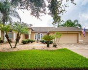 310 Carriage Oak Place, Seffner image