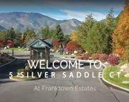 5 Silver Saddle Court, Carson City image