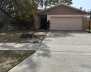1842 Elaine Drive, Clearwater image
