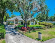 15914 Willowdale Road, Tampa image