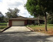 11341 Pine Forest Drive, New Port Richey image