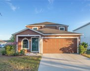 11121 Summer Star Drive, Riverview image