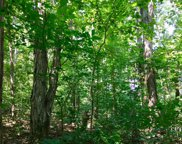 Polly Mountain (Lot #100) Rd, Madisonville image
