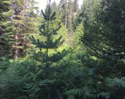 NNA  Peterson Rd. (Lot 3), Priest River image