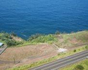 HAWAII BELT RD, PAPAALOA image