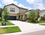 14278 Blue Dasher Drive, Riverview image