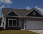 208 Heron Lake Ct., Murrells Inlet image
