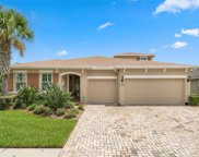 3117 Majestic View Drive, Lutz image