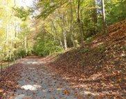 48 & 49 Mountain Laurel Way, Cosby image