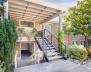 2400 Pine Knoll Dr Unit 2, Walnut Creek image
