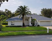 904 Belted Kingfisher Drive S, Palm Harbor image