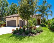 12916 Crystal Clear Place, Lakewood Ranch image