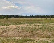 17161 Jackson Ranch Court, Monument image