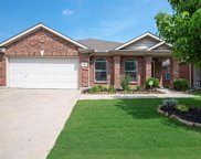 8421 Prairie Fire Drive, Fort Worth image