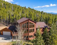 31671 Black Widow Drive, Conifer image