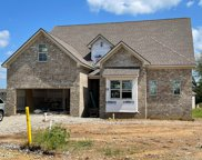 3029 Turnstone Trace, Spring Hill image