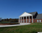 721 County Road 116, Fort Payne image