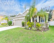 10620 Scenic Hollow Drive, Riverview image