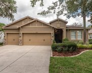 15738 Starling Water Drive, Lithia image