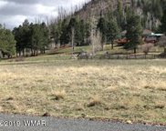 lot 2 Greer Mountain Subdivision, Greer image