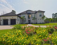 5515 Forest Cove Drive, Dickinson image