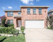 4401 Pangolin Drive, Fort Worth image