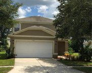 7872 Carriage Pointe Drive, Gibsonton image