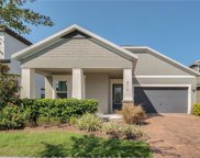 8718 Powder Ridge Trail, Windermere image