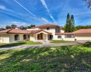 8109 The Meres Drive, Mount Dora image